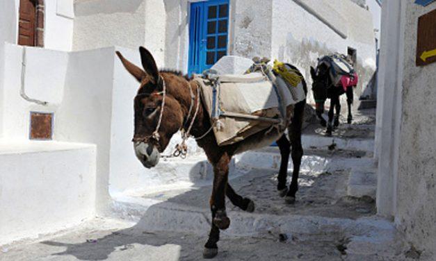 Come muoversi a Santorini